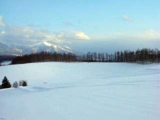 四季彩の丘で雪遊び2