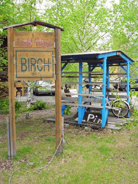 birch4