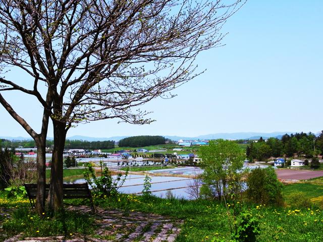 Clover(クローバー)アイス工房田村ファーム~東神楽6