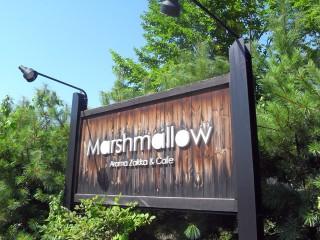 Marshmallow(マーシュマロウ)~帯広カフェ2