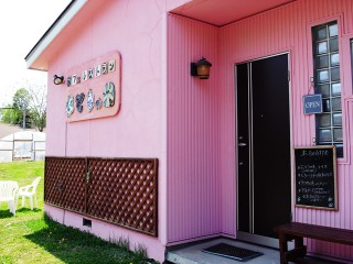 ぶどうの木~美瑛カフェレストラン1