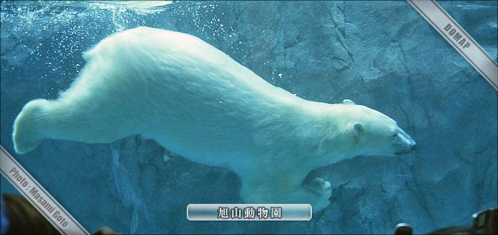北海道旅行:観光地:旭川・層雲峡