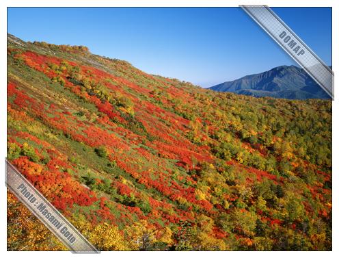 銀泉台・大雪山国立公園