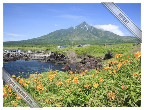 利尻富士とエゾカンゾウ~利尻島